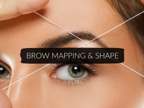 Brow Mapping & Shape